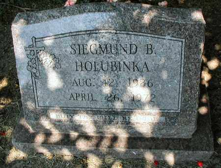 HOLUBINKA, SIEGMUND B. - DuPage County, Illinois   SIEGMUND B. HOLUBINKA - Illinois Gravestone Photos