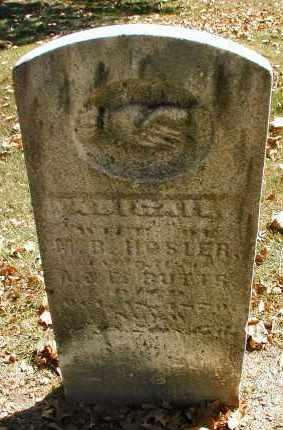 HOSLER, ABIGAIL - DuPage County, Illinois | ABIGAIL HOSLER - Illinois Gravestone Photos