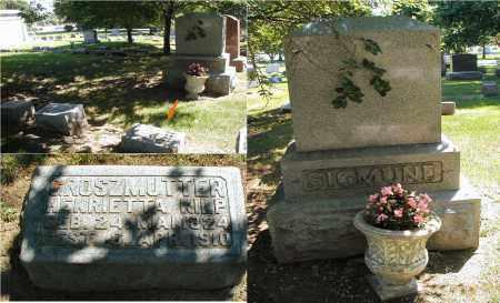 KILP, HENRIETTA - DuPage County, Illinois | HENRIETTA KILP - Illinois Gravestone Photos