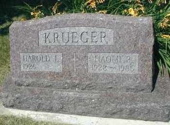 KRUEGER, MARK E. - DuPage County, Illinois | MARK E. KRUEGER - Illinois Gravestone Photos
