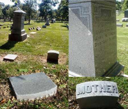 ALDERMAN LYMAN, MARY C. - DuPage County, Illinois | MARY C. ALDERMAN LYMAN - Illinois Gravestone Photos