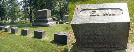 MARTIN, ELIZABETH - DuPage County, Illinois | ELIZABETH MARTIN - Illinois Gravestone Photos