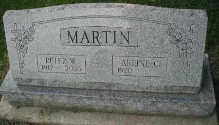 MARTIN, PETER W. - DuPage County, Illinois | PETER W. MARTIN - Illinois Gravestone Photos