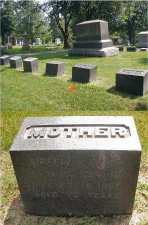 MARTIN, SIBELIA - DuPage County, Illinois | SIBELIA MARTIN - Illinois Gravestone Photos