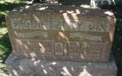 NETZLEY, ANNA - DuPage County, Illinois | ANNA NETZLEY - Illinois Gravestone Photos