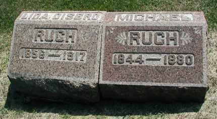 DISBRO RUCH, LIDA - DuPage County, Illinois | LIDA DISBRO RUCH - Illinois Gravestone Photos
