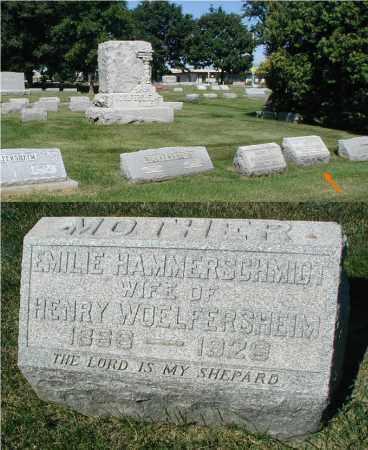 HAMMERSCHMIDT WOELFERSHEIM, EMILE - DuPage County, Illinois   EMILE HAMMERSCHMIDT WOELFERSHEIM - Illinois Gravestone Photos