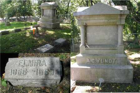 YUNDT, ELMIRA - DuPage County, Illinois | ELMIRA YUNDT - Illinois Gravestone Photos