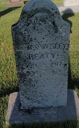 BEATY, JAMES WESLEY - Franklin County, Illinois | JAMES WESLEY BEATY - Illinois Gravestone Photos