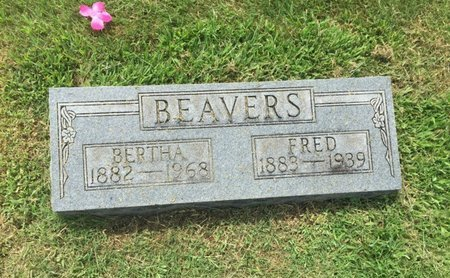 BEAVERS, FRED - Franklin County, Illinois | FRED BEAVERS - Illinois Gravestone Photos