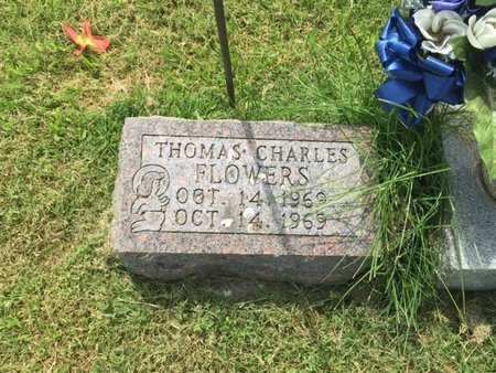 FLOWERS, THOMAS CHARLES - Franklin County, Illinois   THOMAS CHARLES FLOWERS - Illinois Gravestone Photos