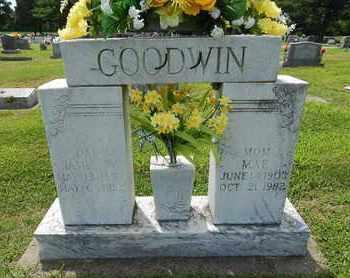 GOODWIN, JAMES W - Franklin County, Illinois | JAMES W GOODWIN - Illinois Gravestone Photos