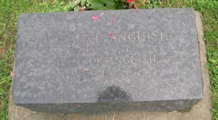ANGUISH, R.G. - Hancock County, Illinois | R.G. ANGUISH - Illinois Gravestone Photos
