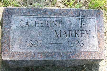 MARKEY, CATHERINE - Hancock County, Illinois   CATHERINE MARKEY - Illinois Gravestone Photos