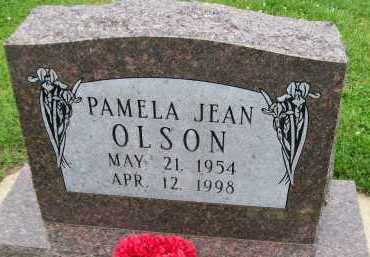 OLSON, PAMELA JEAN - Hancock County, Illinois | PAMELA JEAN OLSON - Illinois Gravestone Photos