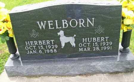 WELBORN, HERBERT - Hancock County, Illinois | HERBERT WELBORN - Illinois Gravestone Photos