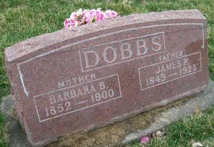 DOBBS, JAMES P. - Henderson County, Illinois | JAMES P. DOBBS - Illinois Gravestone Photos