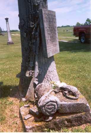 EVANS, GEORGE - Henderson County, Illinois | GEORGE EVANS - Illinois Gravestone Photos