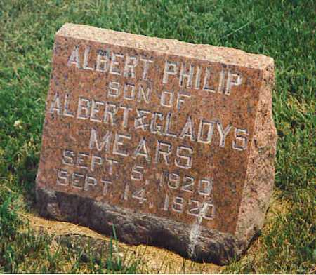 MEARS, ALBERT PHILIP - Henderson County, Illinois | ALBERT PHILIP MEARS - Illinois Gravestone Photos