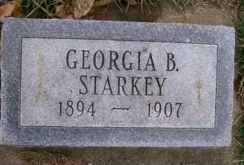STARKEY, GEORGIA B. - Henderson County, Illinois | GEORGIA B. STARKEY - Illinois Gravestone Photos