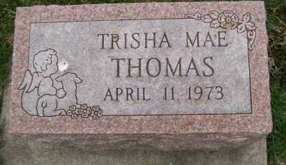 THOMAS, TRISHA MAE - Henderson County, Illinois | TRISHA MAE THOMAS - Illinois Gravestone Photos