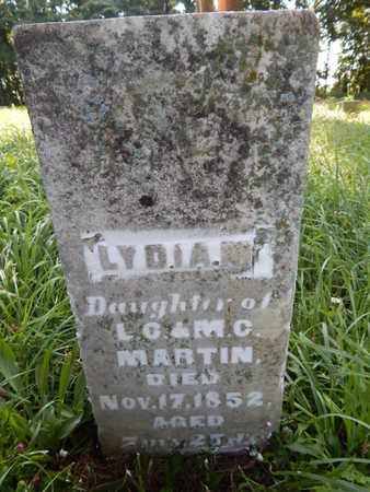 MARTIN, LYDIA M - Jefferson County, Illinois | LYDIA M MARTIN - Illinois Gravestone Photos