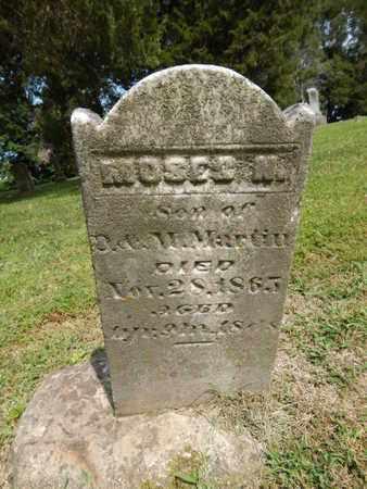 MARTIN, MOSES N - Jefferson County, Illinois | MOSES N MARTIN - Illinois Gravestone Photos