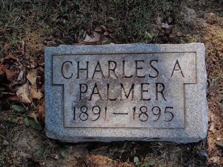 PALMER, CHARLES A - Jefferson County, Illinois | CHARLES A PALMER - Illinois Gravestone Photos