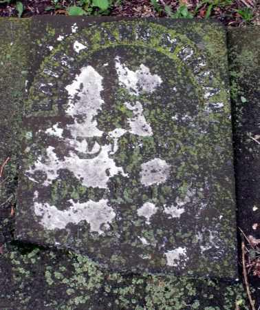 MORGAN, LAURA ANN - Kane County, Illinois | LAURA ANN MORGAN - Illinois Gravestone Photos