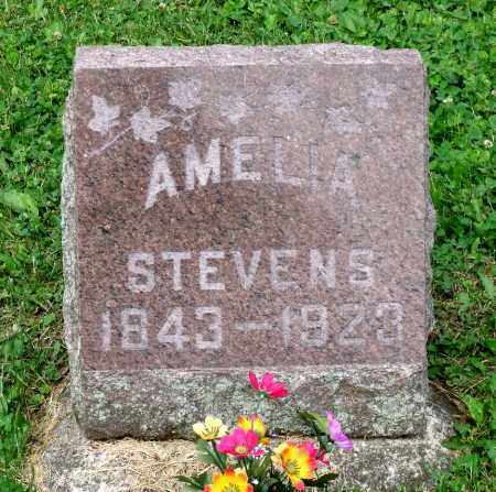 STEVENS, AMELIA - Kane County, Illinois | AMELIA STEVENS - Illinois Gravestone Photos
