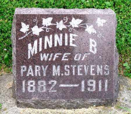 WRIGHT STEVENS, MINNIE B. - Kane County, Illinois | MINNIE B. WRIGHT STEVENS - Illinois Gravestone Photos