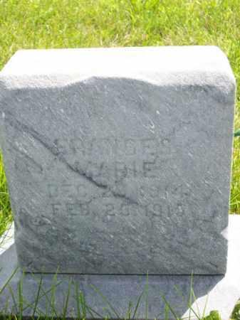 HENRY, FRANCES MARIE - Marshall County, Illinois | FRANCES MARIE HENRY - Illinois Gravestone Photos