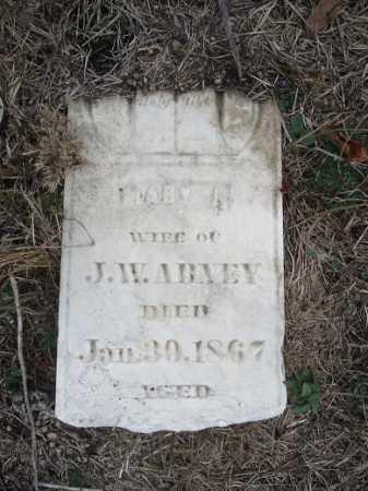 ABNEY, MARY J - Morgan County, Illinois | MARY J ABNEY - Illinois Gravestone Photos