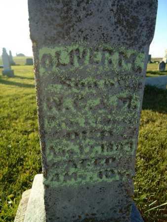 BROCKHOUSE, OLIVER M. - Morgan County, Illinois   OLIVER M. BROCKHOUSE - Illinois Gravestone Photos