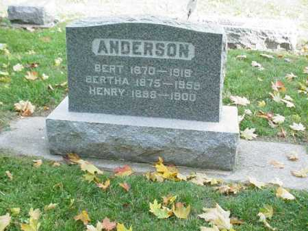 ANDERSON, BERTHA - Ogle County, Illinois | BERTHA ANDERSON - Illinois Gravestone Photos