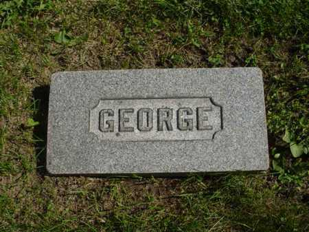 BALDRIDGE, GEORGE - Ogle County, Illinois | GEORGE BALDRIDGE - Illinois Gravestone Photos