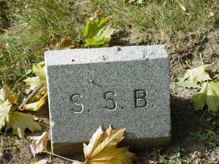 BARBER, S. S. - Ogle County, Illinois | S. S. BARBER - Illinois Gravestone Photos