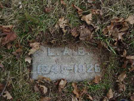 BLY, L. A. - Ogle County, Illinois   L. A. BLY - Illinois Gravestone Photos