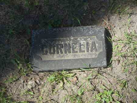 BOYLE, CORNELIA - Ogle County, Illinois | CORNELIA BOYLE - Illinois Gravestone Photos