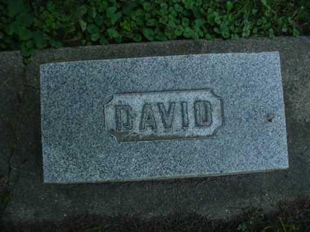 BOYLE, DAVID - Ogle County, Illinois | DAVID BOYLE - Illinois Gravestone Photos