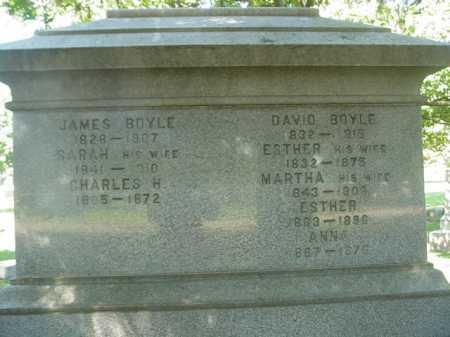 BOYLE, DAVID - Ogle County, Illinois   DAVID BOYLE - Illinois Gravestone Photos