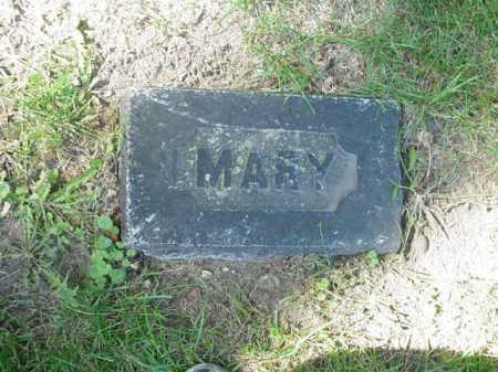 BOYLE, MARY - Ogle County, Illinois   MARY BOYLE - Illinois Gravestone Photos