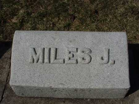 BRAIDEN, MILES JOSEPH - Ogle County, Illinois   MILES JOSEPH BRAIDEN - Illinois Gravestone Photos