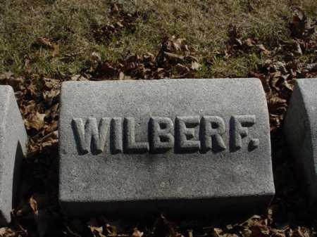 BRAIDEN, WILBUR FLAGG - Ogle County, Illinois | WILBUR FLAGG BRAIDEN - Illinois Gravestone Photos