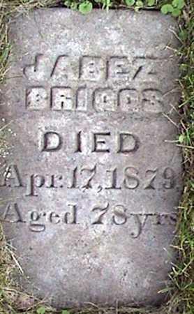 BRIGGS, JABEZ - Ogle County, Illinois   JABEZ BRIGGS - Illinois Gravestone Photos