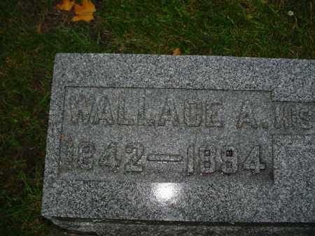 BROWN, WALLACE - Ogle County, Illinois | WALLACE BROWN - Illinois Gravestone Photos