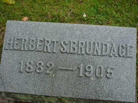 BRUNDAGE, HERBERT S. - Ogle County, Illinois | HERBERT S. BRUNDAGE - Illinois Gravestone Photos