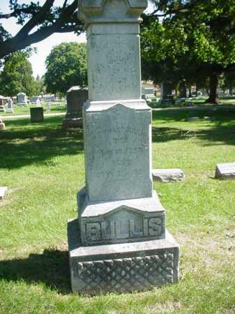 BULLIS, ELIZABETH - Ogle County, Illinois | ELIZABETH BULLIS - Illinois Gravestone Photos