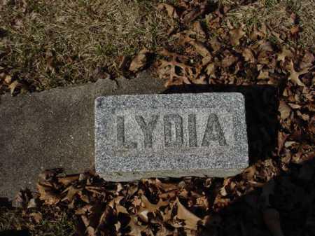 BURGESS, LYDIA - Ogle County, Illinois | LYDIA BURGESS - Illinois Gravestone Photos