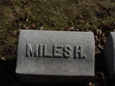 BURLINGIM, MILES HENRY - Ogle County, Illinois   MILES HENRY BURLINGIM - Illinois Gravestone Photos